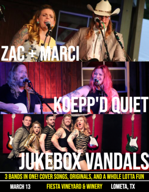 Jukebox Vandals, Zac + Marci, and Koepp'd Quiet Play Fiesta Winery